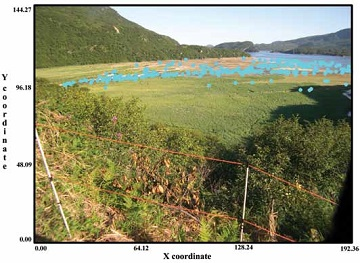 a floodplain with blue dots representing bear activity on a given day