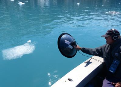 researcher records sounds of the ocean with a dish style microphone