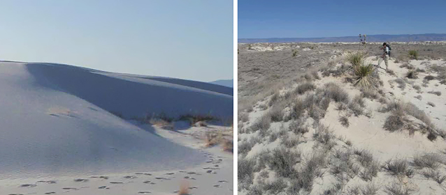 Barchan-shaped dune (left) and parabolic-shaped dune (right)