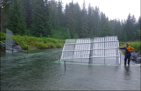 fence in a river to direct fish