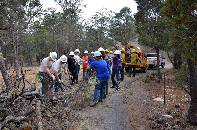 Alternative Spring Break volunteers help fire managers chip dead and down vegetatio