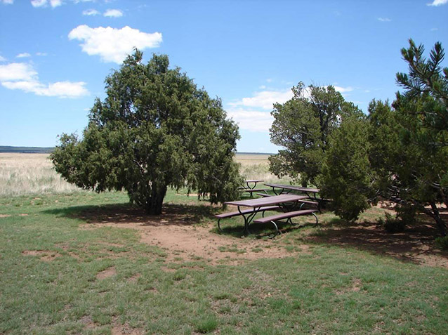 Picnic area of visitor center (Mission 66 Visitor Center Site: CLI, NPS, 2010)