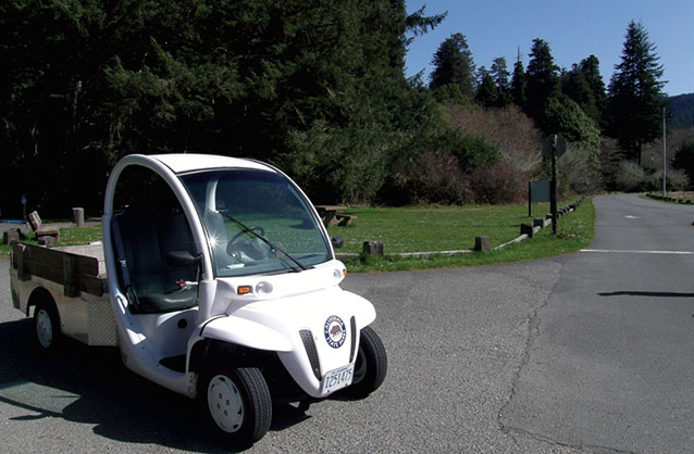 small electrical vehicle being used in a park