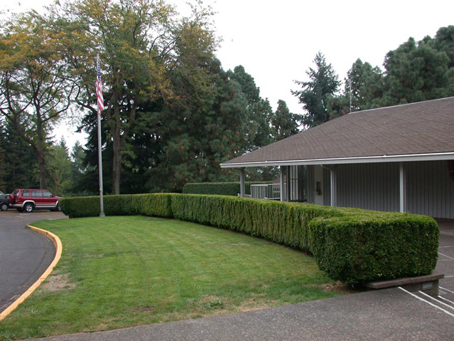 A low, neatly-cut boxwood hedge separates a building from a lawn with a flagpole.