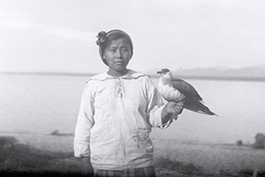 Athabascan girl holding a young jaeger (bird) at Tanalian Point, 1921