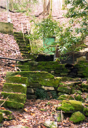 A carpet of moss covers stone steps and a stone wall beside the opening of a well in a hillside.