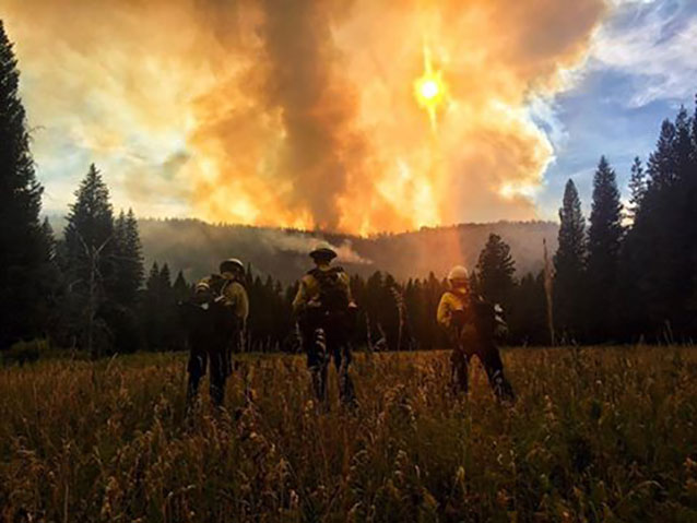Three firefighters standing in a field, looking into the smoke and sun.