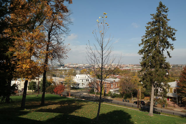 A view from a hilltop on a sunny day towards the city of Washington, D.C.
