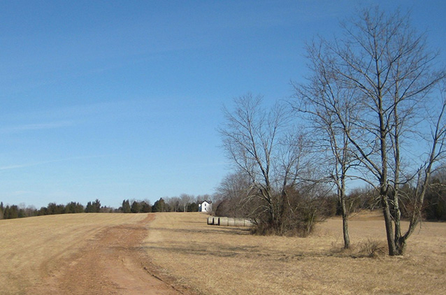 Farm buildings at the end of an unpaved driveway through a sunny, dormant landscape.