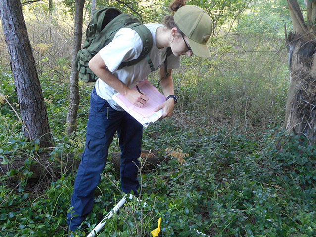 Emily Roberts inventorying a vegetation plot