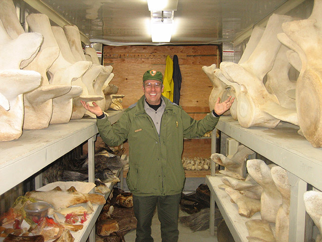 a ranger standing in a building filled with shelves of whalebone