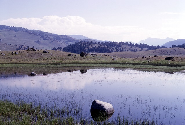 A kettle pond in Lamar Valley (Yellowstone National Park, WY-MT-ID)