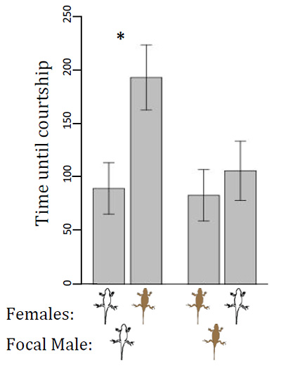 Graph of time before males began courting females with matching and different coloration