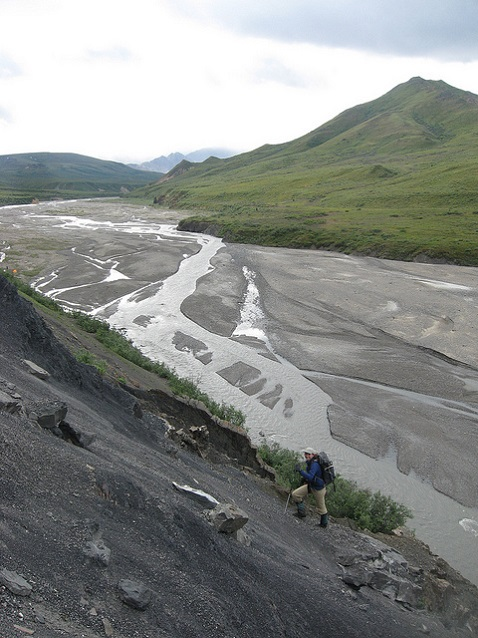 Braided channel at Denali National Park (Alaksa)