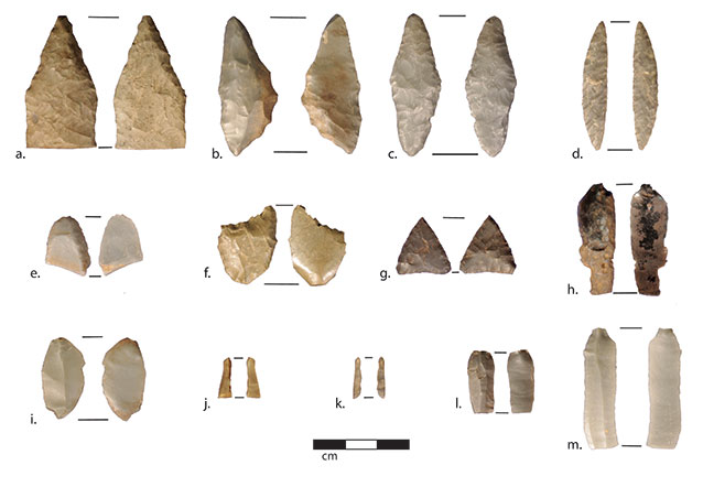 roughly two dozen stone arrowheads of various sizes