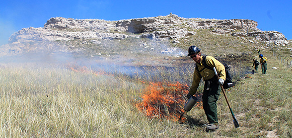 wildland firefighters at work on a RX fire