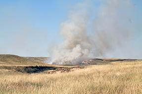 smoke from a prescribed wildland fire