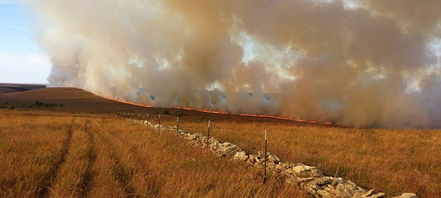 Landscape view of a line of fire at Tallgrass Prairie National Preserve