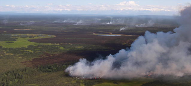 wildland fire aerial view at Denali National Park