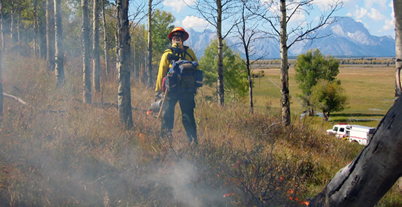 Firefighters monitor the prescribed fire as it burns