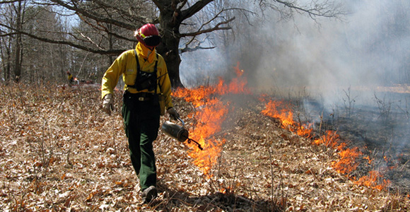 Prescribed fire at the Revolutionary War-era Saratoga National Historical Park