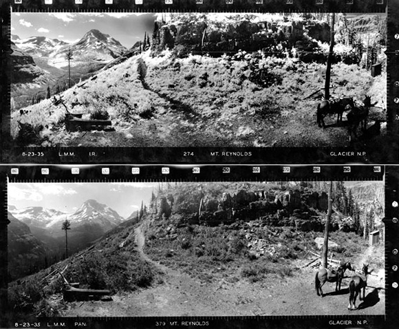 historic landscape views of Mount Reynolds, Glacier National Park.