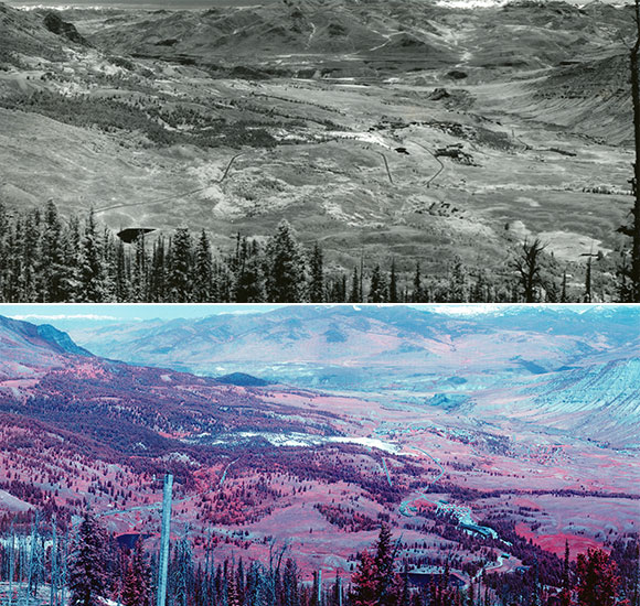 Yellowstone landscape from 1935 to 2008