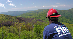 A man in a helmet looks out over a hilly landscape with a burned area in it.