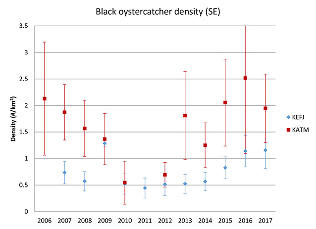 Data graph of black oystercatcher density in Kenai Fjords and Katmai.