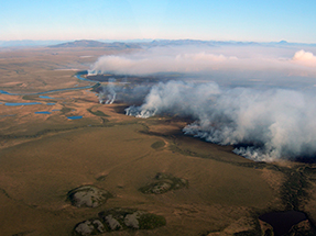 Aerial view of smoke plumes coming from tundra fire.