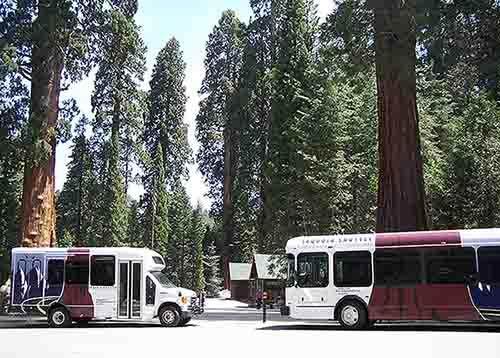 Sequoia & Kings Canyon shuttles