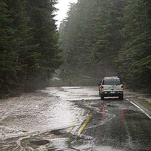 Flooded road in Mount Rainier National Park.