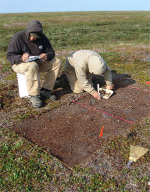 Archeologists recover data of past people and climate in Cape Krusenstern National Monument.