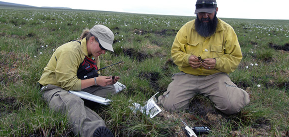 A woman and a man sit on the tundra looking at organic material.