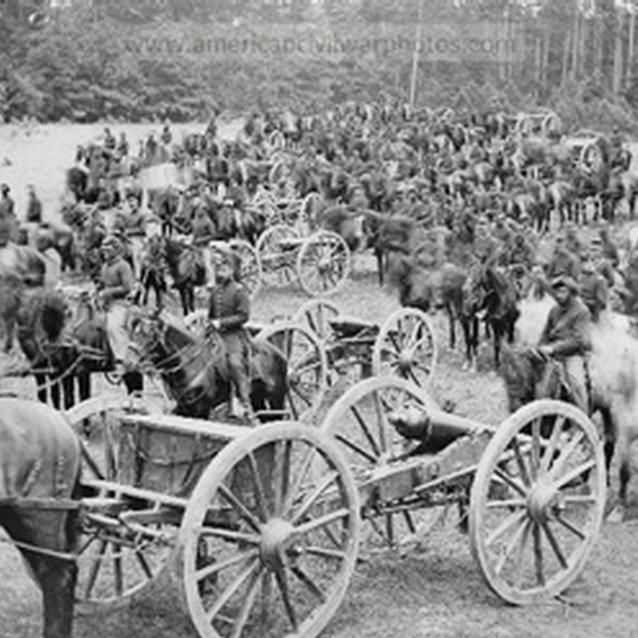 Photograph of horses and horses pulling carriages