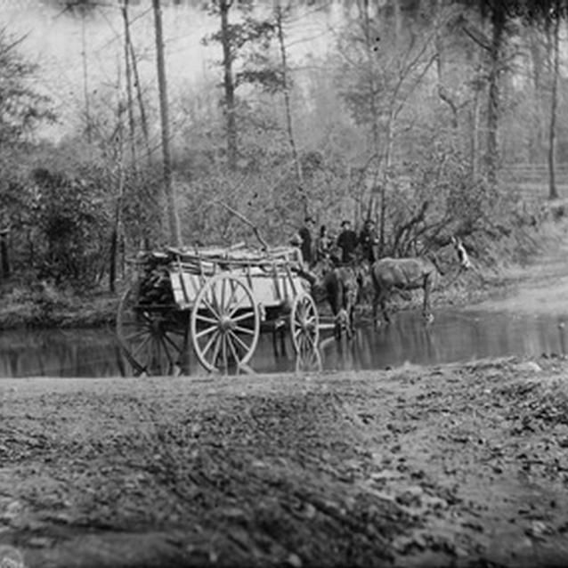 Photograph of mules pulling a cart through a brook