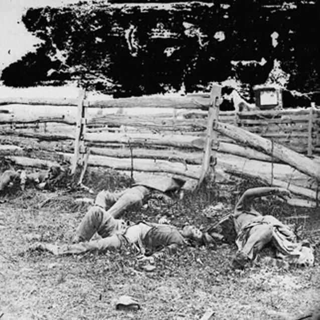 Photograph of dead soldiers from a Louisiana Regiment