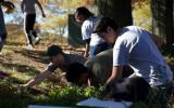 9th grade students learn erosion control