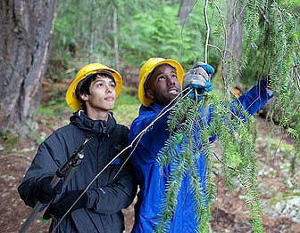 Youth participate in a volunteer work day while attending a North Cascades Institute youth program.