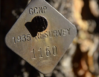 A tag identifying a tree in Grand Canyon National Park