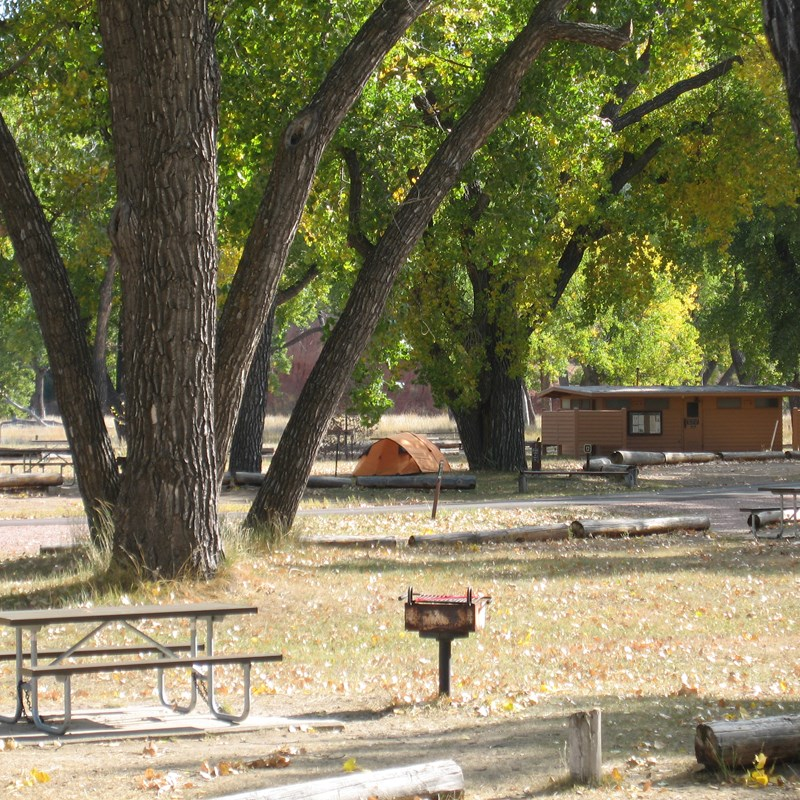 A peaceful, quiet campground with tents, fire grates and picnic benches.
