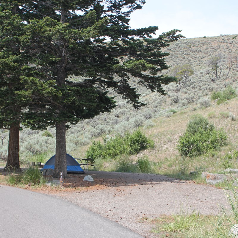 Tent pitched at campground