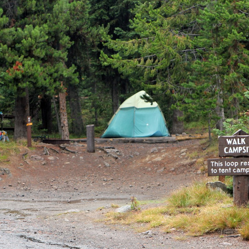 Lewis Lake Campground - Yellowstone National Park (U S