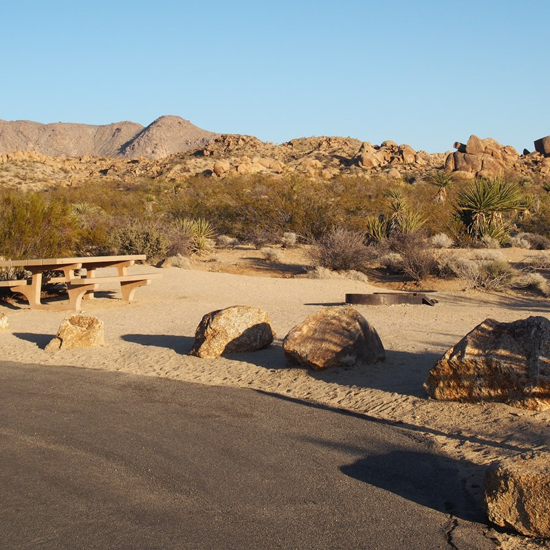 A campsite with a picnic table and fire pit.