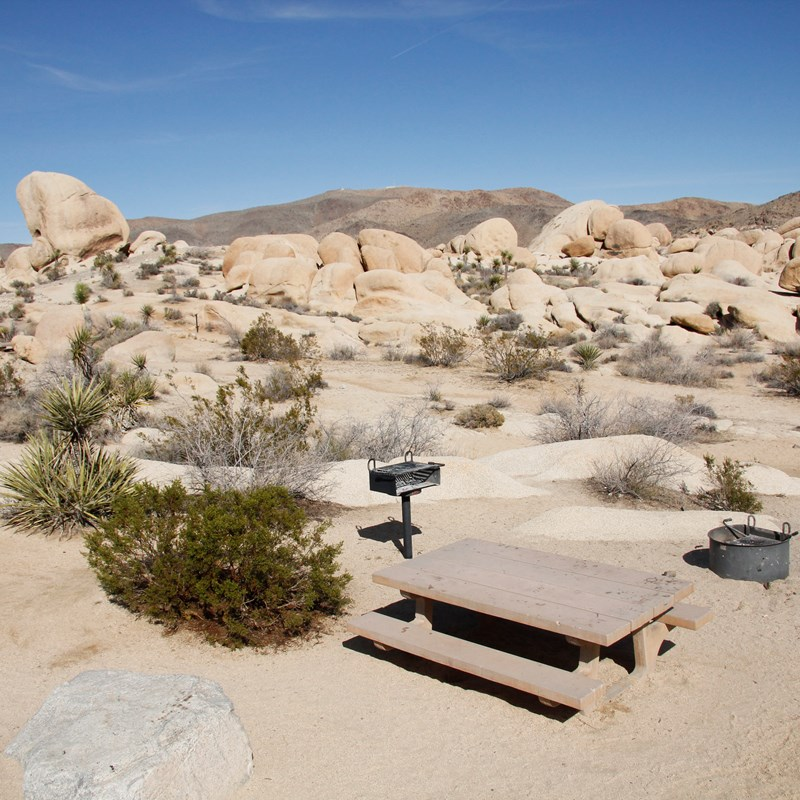 A picnic table and fire ring are in a campsite that has a view looking out on a boulder field.