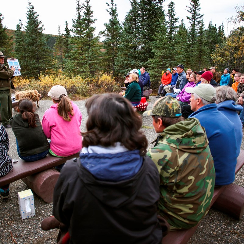 a crowd sitting on benches faces a park ranger giving a talk