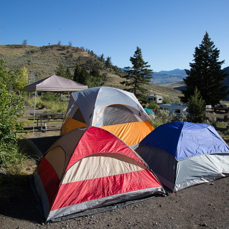 Tents pitched at the Mammoth Hot Springs Campground