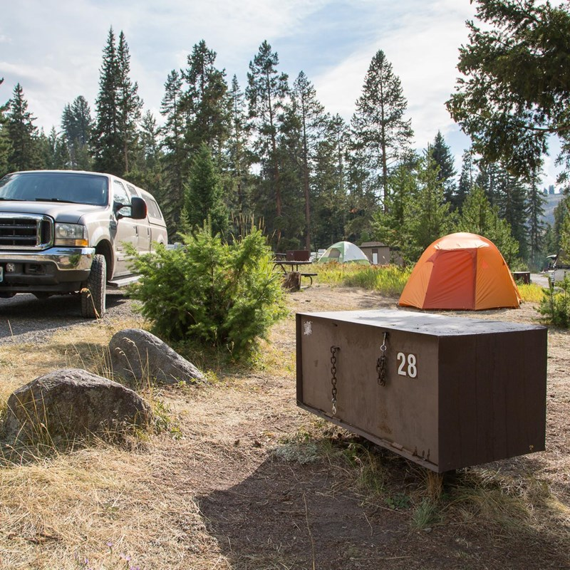 Campsite with bear proof food storage at Tower Fall Campground