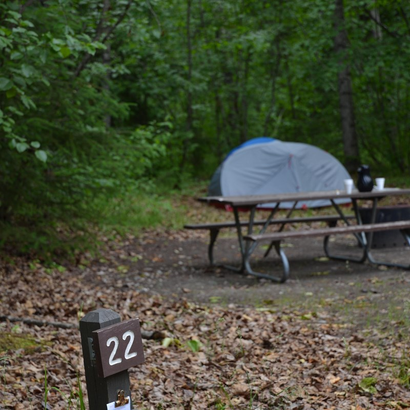 Campsite with a tent, picnic table, and fire ring