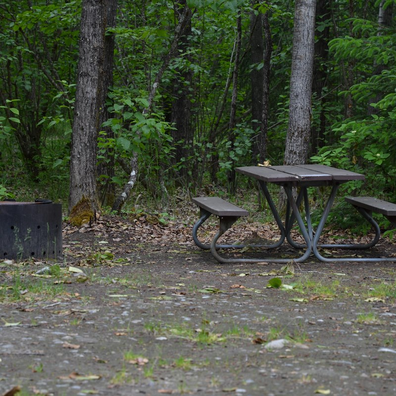 Picnic table and fire ring in an open area